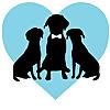 FairyTail Pet Care   Pet Sitting and Pet Coordination Blog