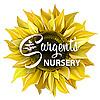 Sargent's Nursery