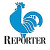 The Reporter | Golden State Warriors