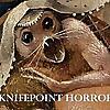 Knifepoint Horror