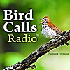 Bird Call Radio | Exploring birdlife around the world