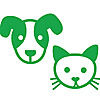Healthy Paws   Cat Health