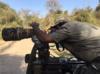 Arjun Anand | Wildlife Photography Blog