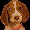 Bailey The Beagle