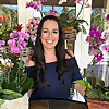 Orchid Diva