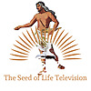 Seed of Life Television