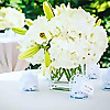 Haute Couture Events | Miami Wedding and Event Planner
