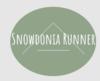 Snowdonia Runner