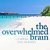 The Overwhelmed Brain - Podcast