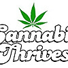 Cannabisthrives.com