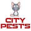 City Pests